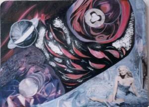 l'Ombra - collage- laura bottagisio