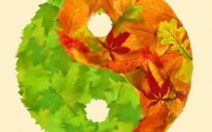 yin-yang-autunno-360x225